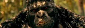 DCTV Podcast Episode 045